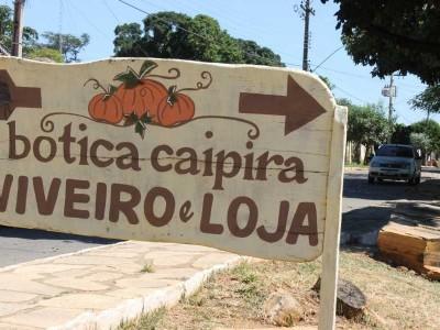 viveiro-e-loja-botica-caipira-810c615b35d854c0be86a1747006a8b8-1526681986